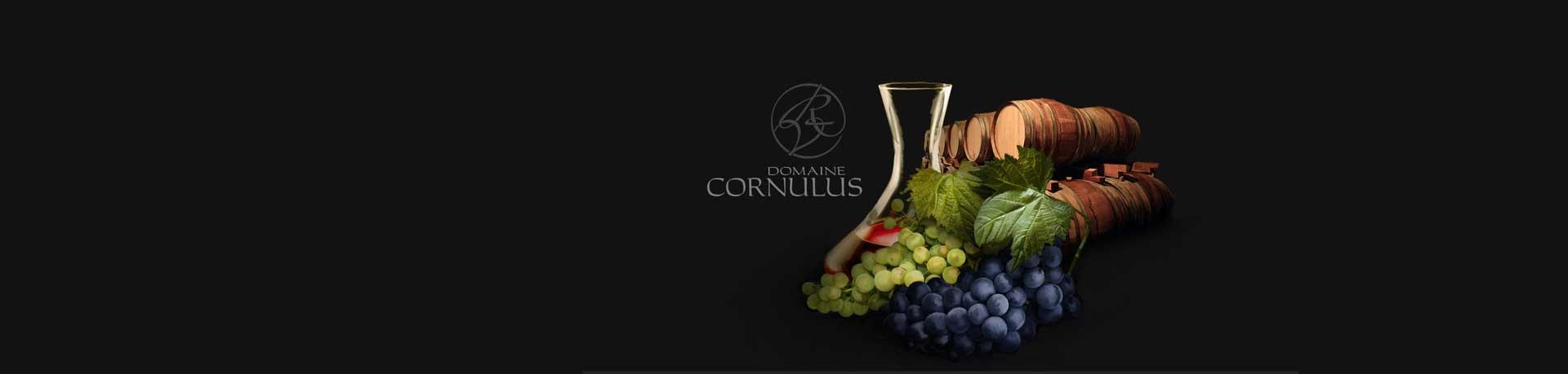 Cornulus